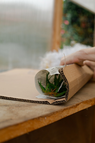 emballage-livraison-florama-3